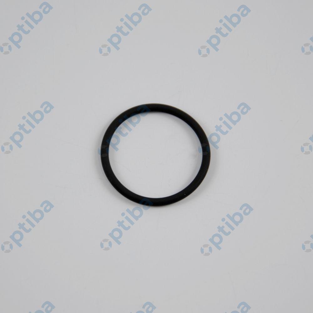 O-ring 22x2 486000505 BUSCH